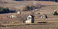 Châtillon-en-Diois Drôme vigne vin hiver randonnee  http://www.rando-drome.com/