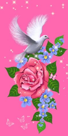 Pink Love, Rooster, Cute, Flowers, Wallpapers, Urban, Animals, Beautiful, Mobile Wallpaper