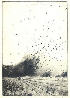 Eiko Borcherding - Hoestarken, photogravure and drypoint, 2009