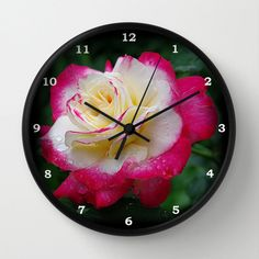 Rose wall clock, 'Double Delight' rose photograph, gift for gardener, pink, red, cream flower, botanical nature photograph clock, landscape by RVJamesDesigns on Etsy