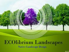 Tree Line PowerPoint Template powerpoint presentation theme Powerpoint Presentation Themes, Background Powerpoint, Best Seo Services, Purple Trees, Powerpoint Template Free, Tree Line, Landscape Design, Places To Visit, Templates