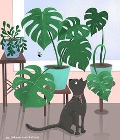 childrensbook illustration, illustration, custom illustration, digital art, ipadpro, procreate Illustrator, Plant Leaves, Digital Art, Cats, Flowers, Gatos, Cat, Kitty, Royal Icing Flowers
