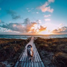 There's nothing like chasing a sunset with your best friend. Hearts melted with Joanna Find's stunning shot from the beach. We can't wait to see how you capture your moments with your pets! Share with us at gopro.com/awards. #BestOfGoPro