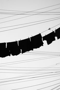 Black shirts on a clothing line. So dramatic.