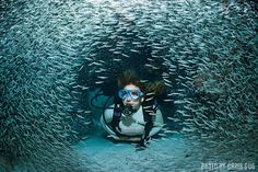 Two-tank wreck and reef dives combine for the perfect pairing in the Florida Keys.