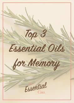 Memory. We all wish we had a better one. Luckily, essential oils can help! Click the photo to read about the top 3 essential oils for memory, and how you can use them to your advantage.