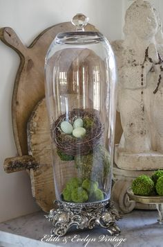 clear glass vases upside down, add a glass knob = A cloche, Clear Glass Vases, Glass Domes, Casa Magnolia, Apothecary Jars Decor, Cloche Decor, The Bell Jar, Bell Jars, Dollar Tree Crafts, Decorated Jars