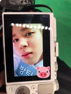 Jimin ❤ [BTS Trans Tweet] 170116 아육대 지민이 돼지 / 170116 ISAC Jiminie pig (a cute pig, a cUTE PIG) #BTS #방탄소년단