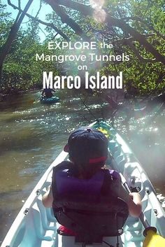Looking for things to do in Marco Island or Naples FL? Try Kayaking the Mangroves with Paddle Marco in Florida.