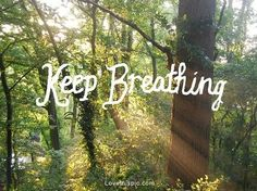 life quotes, text, nature quotes, sunny days, deep breath
