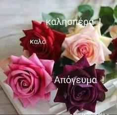 Rose, Flowers, Plants, Greek, Inspiring Sayings, Pink, Plant, Roses, Royal Icing Flowers