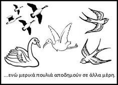 immigration_birds.jpg (399×289)