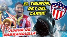 El Junior de Barranquilla es uno de los clubes más queridos y populares de Colombia. Los Tiburones han conquistado 7 Estrellas de Colombia, es decir 7 Ligas a lo largo de su historia. La primera de ellas en 1977, y la ultima hasta la fecha en 2011. Recientemente, ha logrado ganar 2 Copas de Colombia en 2015 y 2017.  En 1994 pudo llegar hasta las semifinales en la Copa de Libertadores, perdiendo alli por penaltis ante Vélez Sarsfield.