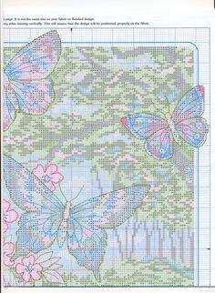 beauty of the butterflies 9