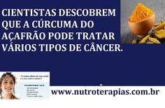 Açafrão - Cientistas descobrem que a Cúrcuma do Açafrão pode curar cânce...