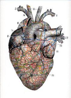 "Saatchi Online Artist tyrone dalby; Assemblage / Collage, ""PULSE"" #art Anatomical Heart, Art Plastique, Map Collage, Heart Collage, Cartography, Anatomy Art, Human Anatomy, Cardiac Anatomy, Collages"