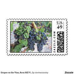 Grapes on the Vine, Aron Hill Vineyard Postage Stamp