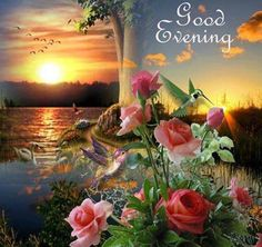 Have a Blessed & Relaxed Evening! Good Morning Prayer, Good Morning Funny, Morning Prayers, Good Afternoon, Good Morning Good Night, Good Evening Greetings, Good Evening Wishes, Night Wishes, Good Night All