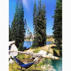 Three day weekends don't happen nearly enough... @charz1218 and I took the day to hike Red Pine Lake and lounge in the sun in our hammocks. #redpinelake #littlecottonwood #wasatch #hammock #hammocklife #hike #hikeutah #outdoorwomen #charandrubes #blueskies #mountains #pines #utahgram #igutah #wowutah #utahisrad #unrealutah #utahcollective #campingcollective #grandtrunk #grandtrunking #scheels  #granolagirl #in2nature