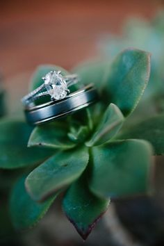 To see more chic details about this CA wedding: http://www.modwedding.com/2014/11/29/simply-chic-california-wedding-acres-hope-photography/ #wedding #weddings #engagement_ring