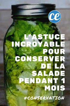 L'Astuce Incroyable Pour Conserver de la Salade PENDANT 1 MOIS. Do you want to keep your fruits and vegetables longer? Here is the trick to keep your salad for 1 month! Healthy Salad Recipes, Healthy Breakfast Recipes, Ramen Recipes, Noodle Recipes, Diet Recipes, Chicken Recipes, Vegan Recipes, Growing Vegetables, Fruits And Vegetables