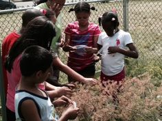 """As part of """"A Summer to Discover"""", Summer Camp participants at The Gateway Family YMCA – Elizabeth Branch learn about gardening during a portion of their camp experience, pr..."""