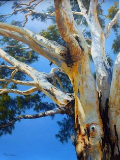Branches of the River Red Gum Watercolor Trees, Watercolor Landscape, Landscape Art, Landscape Paintings, Tree Paintings, Australian Painting, Australian Art, Beach Scene Painting, Pastel Art