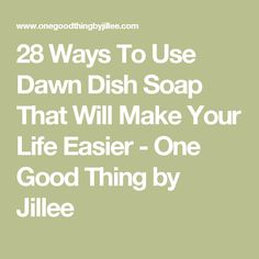 28 Ways To Use Dawn Dish Soap That Will Make Your Life Easier - One Good Thing by Jillee