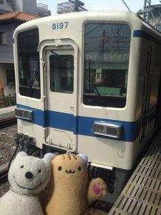 クマ散歩:坂戸から越生に転送 Beam me up, Scotty! Transport to Ogose from Sakado!♪☆(^O^)/  #越生 #坂戸 #転送