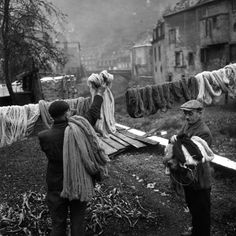 Teinture à Aubusson (1945). Robert Doisneau.