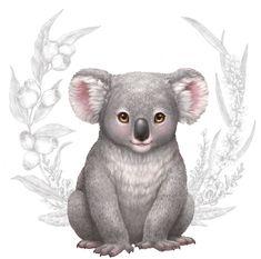 Little Aussie Friends Tote Bag Little-Aussie-Animals-baby-Koala-Mug Baby Animal Drawings, Animal Sketches, Baby Koala, Koala Bears, Friends Illustration, Koala Illustration, Koala Tattoo, Baby Platypus, Fire Drawing