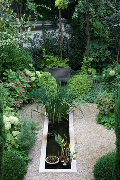 beautiful garden with koi pond in Paris From xavierdechirac.com via Cat Man Du
