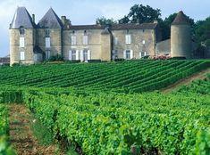 Bordeaux Vineyards, Wine Vineyards, Aquitaine, Chateau De Chinon, Monuments, Wine Chateau, Places To Travel, Places To Visit, Bordeaux Wine