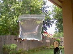 Does this really work? Keep Flies away from your BBQ or your back door. What you will need: A clear plastic sandwich bag. 2 cups of water. A bottle of lime juice. 2 teaspoons of salt. Two or three paper clips And some shiny pennies. Keep Flies Away, Get Rid Of Flies, Diy Garden, Home And Garden, Ideias Diy, Outdoor Living, Outdoor Decor, Home Hacks, Pest Control