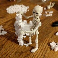 "41 mentions J'aime, 3 commentaires - Nerdy Bones (@n3rdybones) sur Instagram: ""#wait this doesn't go here? … 💀☠☠💀 … #skeleton #skeletal #bone #bones  #toygroup_alliance…"""