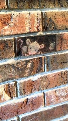 David zinn was at In Hart, MI - 10/22/2013