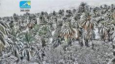 Hóban gázolnak a tevék, havasak a pálmák Afrikában – Lájk