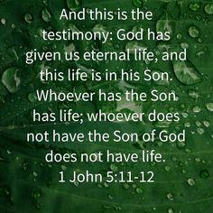 1 John 5:11-12