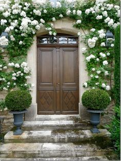 Rose arch over door