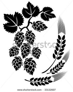 Hops Illustrations and Clip Art. Hops royalty free illustrations, drawings and graphics available to search from thousands of vector EPS clipart producers. Art Et Illustration, Free Illustrations, Black Color Images, Hop Tattoo, Hops Plant, Beer Art, Clip Art, Free Vector Art, Craft Beer
