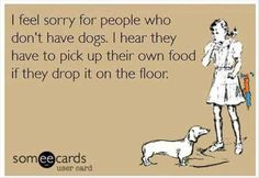 """We taught our dog that the word """"vacuum"""" means """"come eat this stuff off the floor"""". Genius!"""