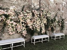 Backstage Iphonepic By Tommaso Torrini. Florals La Rosa Canina.