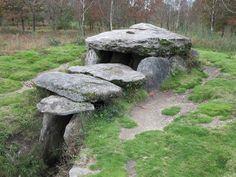 Javier Torres Goberna: Megalitismo gallego. Mámoa do Rei. Castiñeiras (Vilaboa)