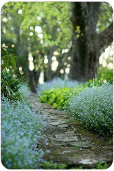 The stone walkway - the essential of your rustic garden.  Allee En Pierre Lavende.