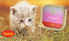 Von Husse Tiernahrung. Gourmet Fish. Katzen Nassfutter, Komplettnahrung mit wertvollen Proteinen und Vitaminen, hohe Verdaulichkeit.