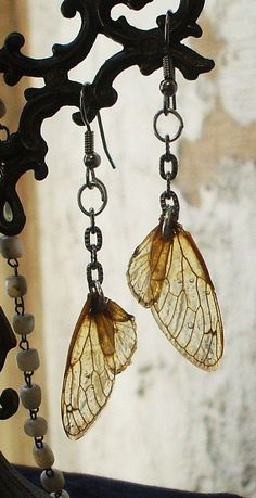 Cicada Wing Earrings from Creations By Raven Jade. I think these are hardened with resin. Resin Jewelry, Diy Jewelry, Jewelry Box, Jewlery, Jewelry Accessories, Jewelry Design, Jewelry Making, Jewelry Stores, Wing Earrings