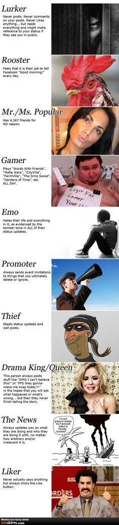 The different types of Facebookers