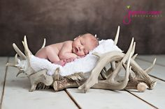 Jennifer Jayne Photography newborn with deer antlers newborn posing creative newborn posing newborn pictures newborn baby with hunting