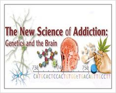 Addiction is defined as a chronic brain disease that leads to compulsive drug hunt and usage despite harmful consequences that lead to drug rehab center Florida. It is considered as a brain disease because drugs can cause the brain, its structure, and its functioning. These brain changes can be long term and lead to the harmful behaviors that are evident in people who abuse drugs.