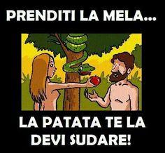 La prima cosa che Eva ha dato da mangiare ad Adamo era la mela, già allora non le andava di stare in cucina e rompeva già le scatole.
